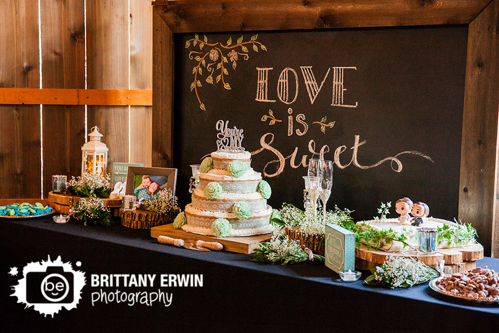 Barn-at-Kennedy-Farm-dessert-table-wedding-photographer-cake-reception.jpg