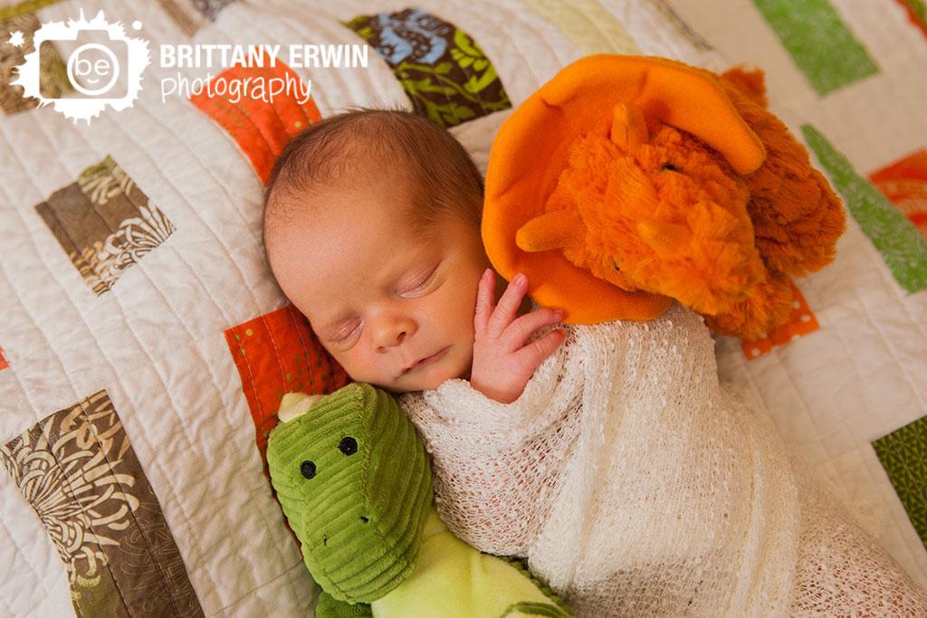 Speedway-Indiana-studio-portrait-photographer-newborn-dinosaur-quilt-wrap.jpg