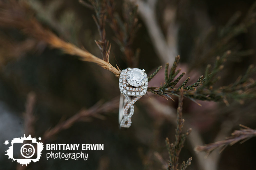 Indianapolis-engagement-portrait-photographer-ring-detail-in-fir-tree-cedar.jpg
