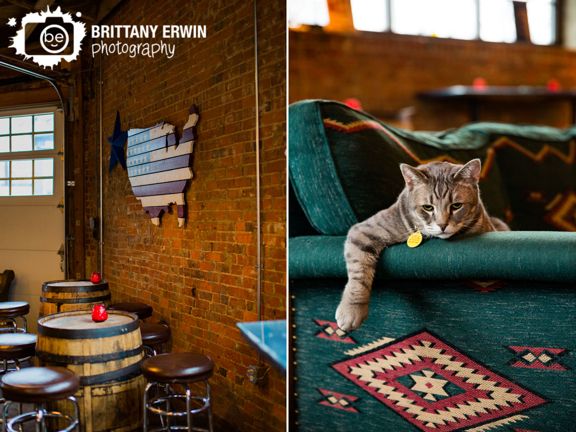 Fountain-Square-Indiana-hotel-tango-artisan-distillery-vegan-brunch-event-cat-lounging-on-couch.jpg