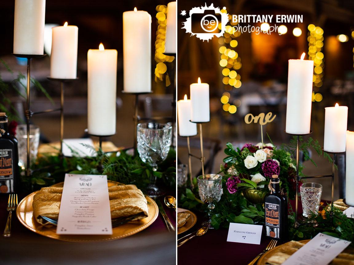 3-Fat-Labs-wedding-barn-event-venue-Blue-Llama-events-planner-Nerdy-Fox-rentals-harry-potter-hogwarts-shoot.jpg