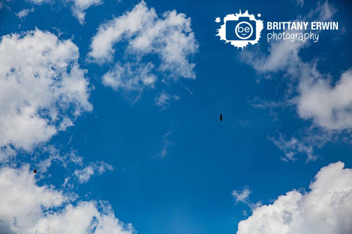 Wedding-day-sky-with-birds-flying.jpg