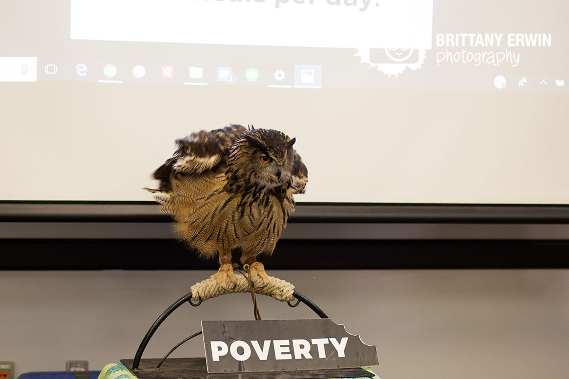 owl-from-Silly-Safari-take-a-bite-out-of-poverty.jpg