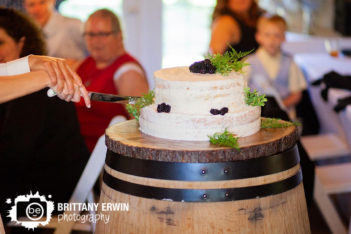 Indiana-wedding-photgorapher-naked-cake-cutting-couple.jpg