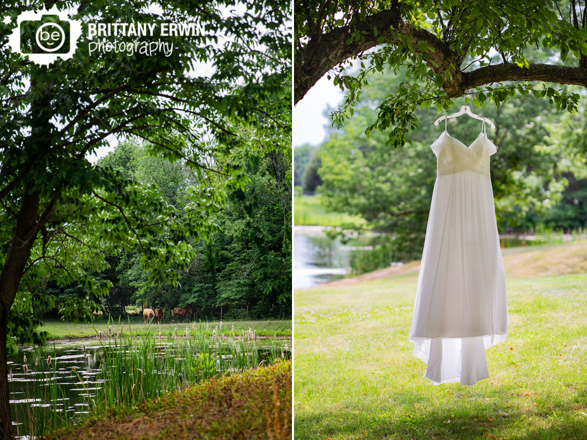 Indianapolis-horse-farm-wedding-photographer-gown-hanging-from-tree.jpg