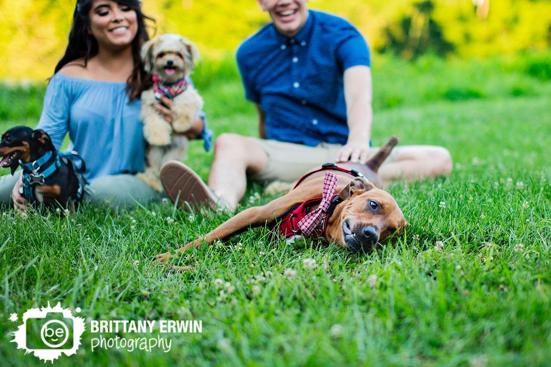 Indianapolis-pet-photographer-engagement-group-summer.jpg