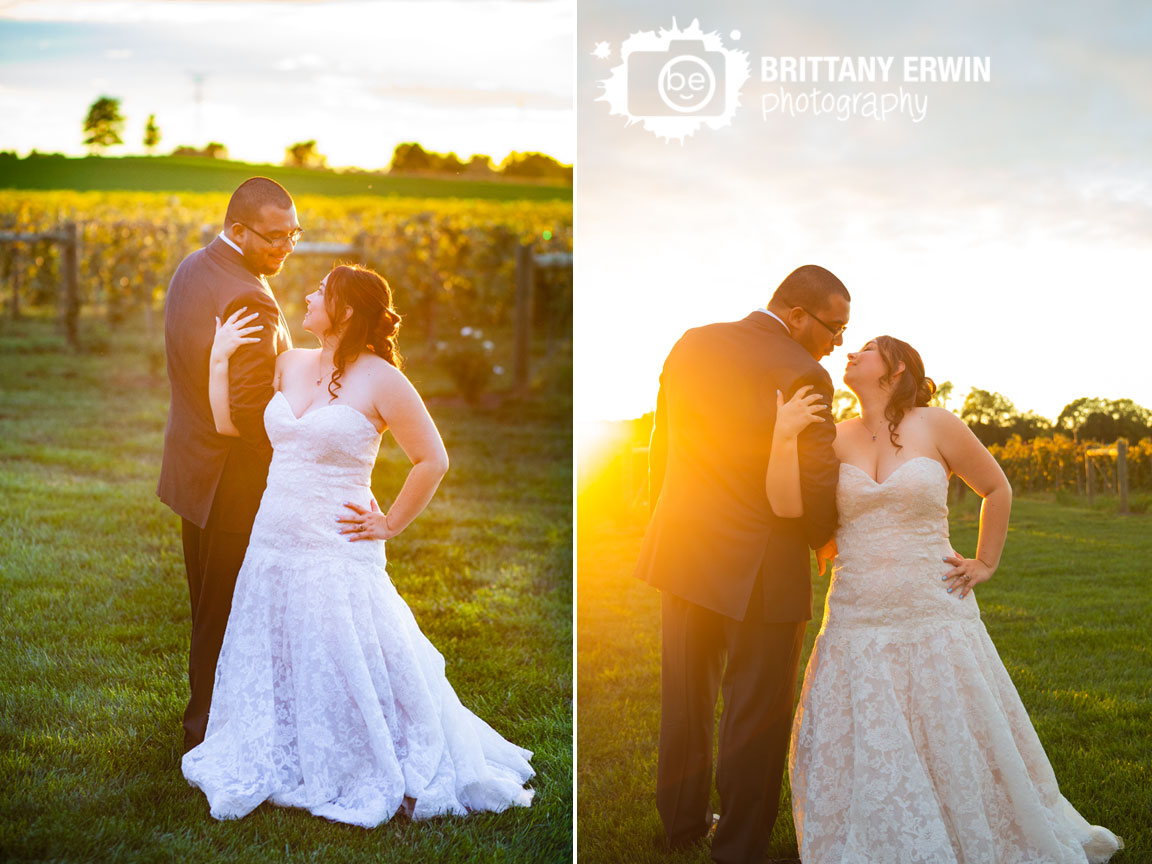 Sycamore-at-Mallow-Run-winery-wedding-photographer-bridal-portrait-at-sunset-in-vineyard.jpg