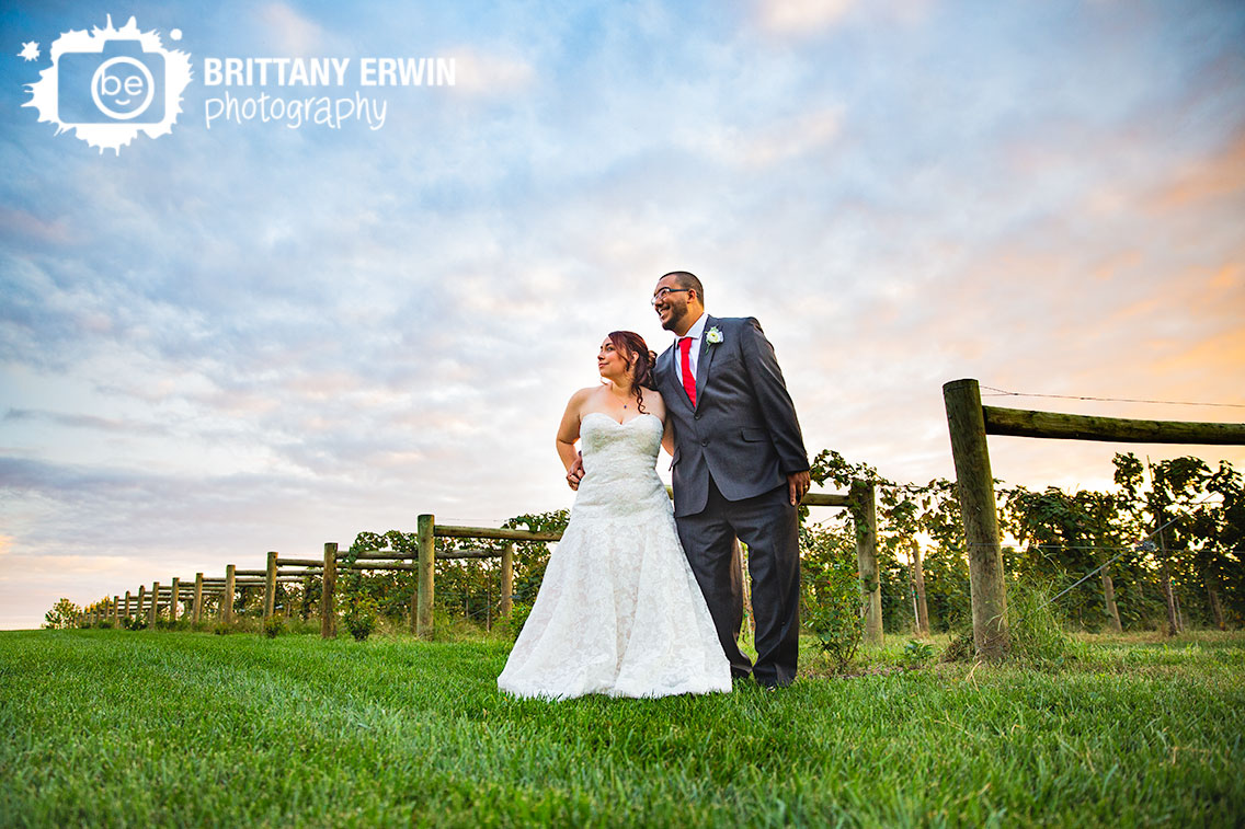 Indianapolis-The-sycamore-at-mallow-run-wedding-bridal-portrait-sunset-vineyard-grape-vine.jpg