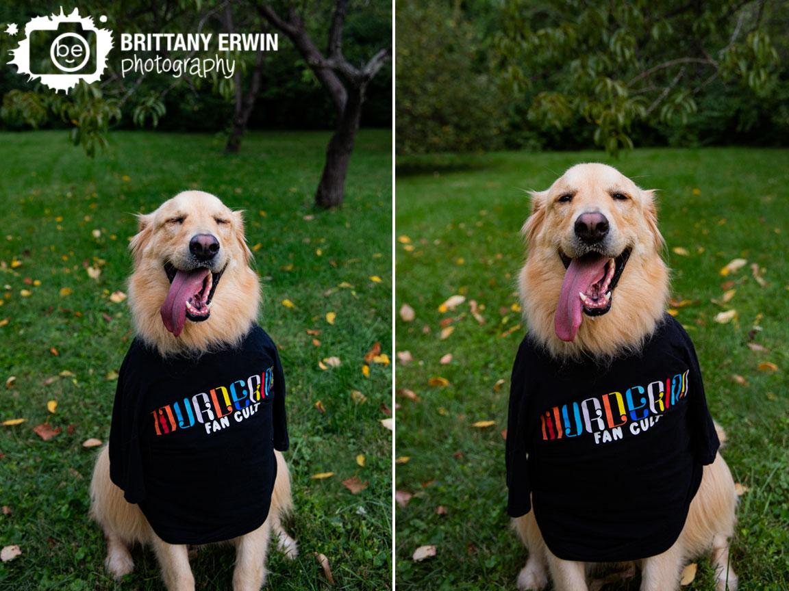 Indianapolis-murderino-fan-cult-tshirt-pet-dog-photographer-golden-retriever-happy-puppy.jpg