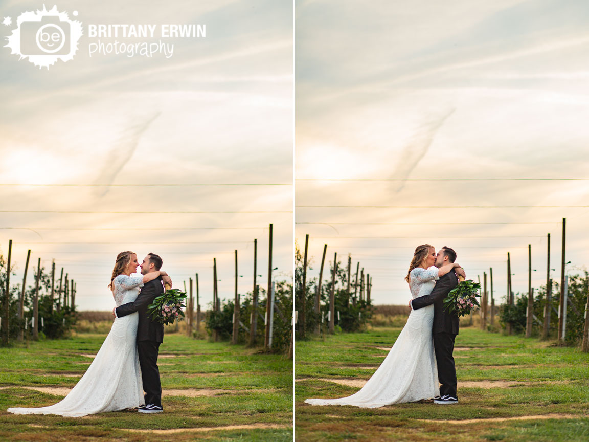 West-Lafayette-Indiana-wedding-photographer-Wea-Creek-Orchard-ceremony-reception-couple-in-apple-tree-field-at-sunset.jpg