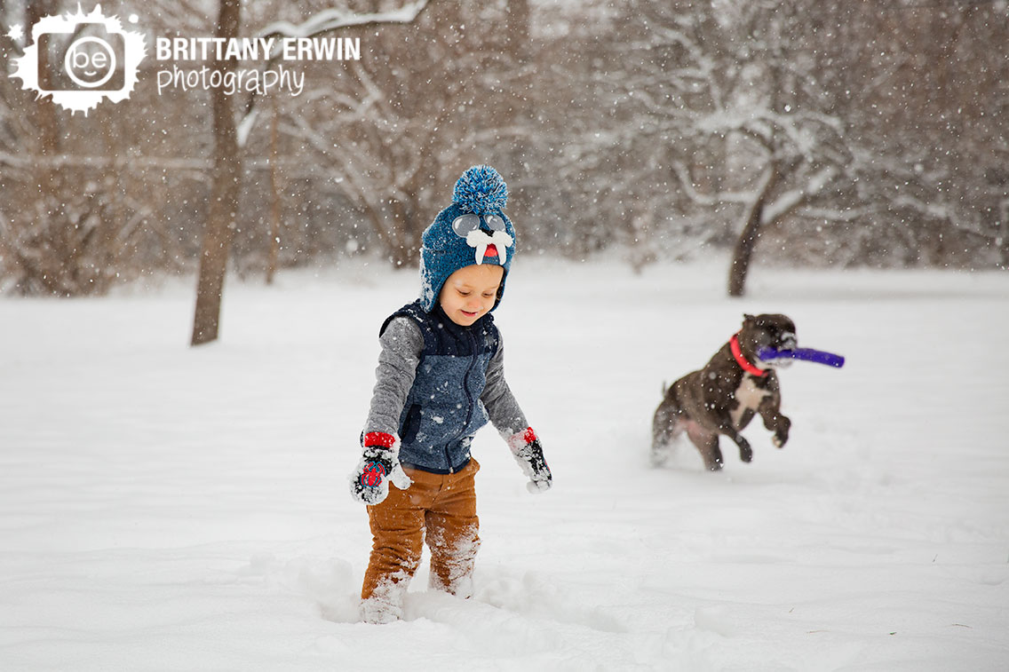 Toddler-playing-outside-in-snow-winter-with-pit-bull-dog.jpg
