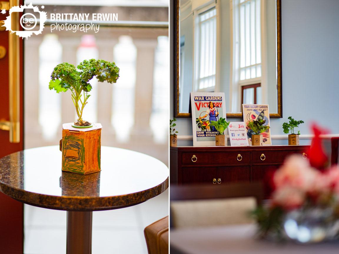 aggresively-organic-desk-planter-cardboard-event-photographer.jpg
