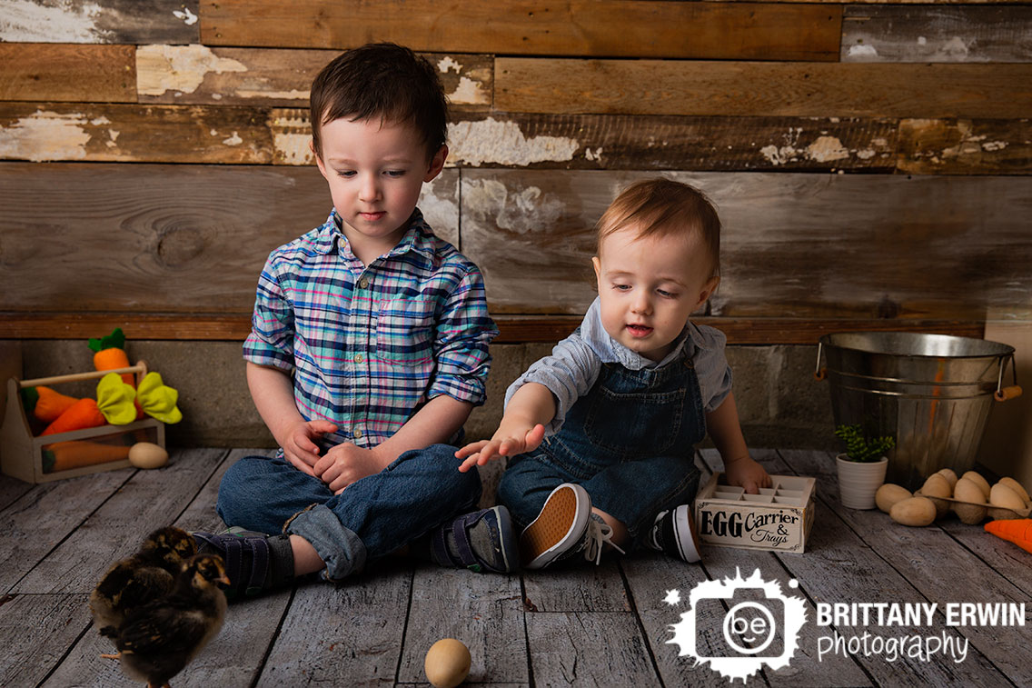 Indianapolis-portrait-studio-mini-session-photographer-baby-chicks-spring-siblings.jpg