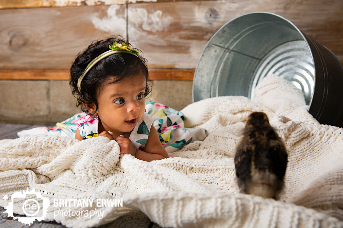 Indianapolis-spring-studio-portrait-photographer-baby-chick-milestone.jpg