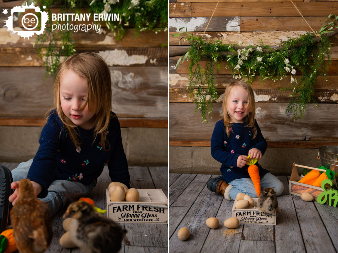 Indianapolis-studio-portrait-photographer-barn-wood-wall-baby-chicks-toddler-girl-feeding-chickens-spring.jpg