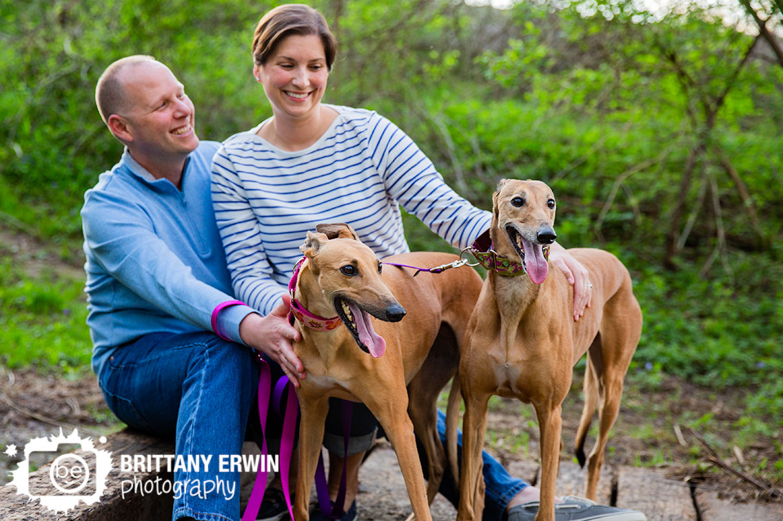 Indianapolis-family-group-photographer-portrait-of-couple-with-greyhound-bonded-pair.jpg