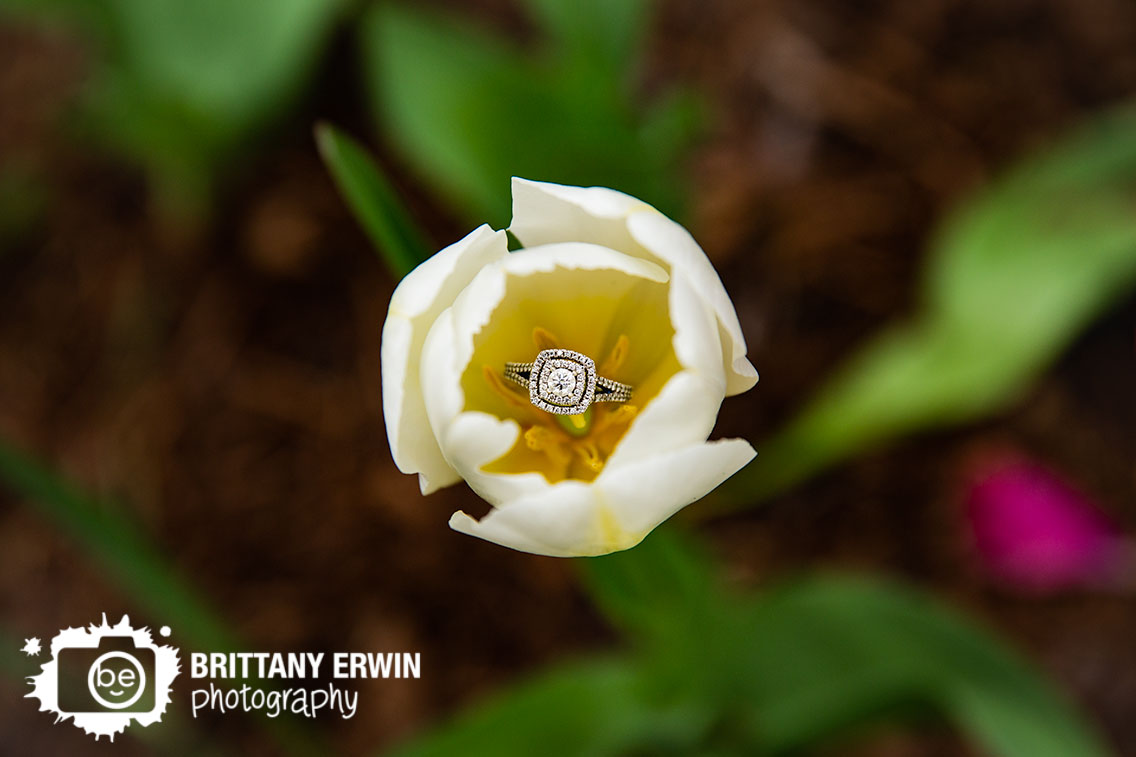 Indy-wedding-engagment-photographer-ring-detail-photo-tulip-with-diamond-band.jpg