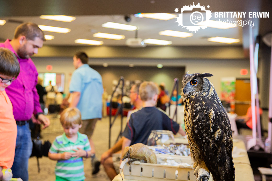 Indianapolis-event-photographer-owl-animal-show-by-silly-safaris.jpg