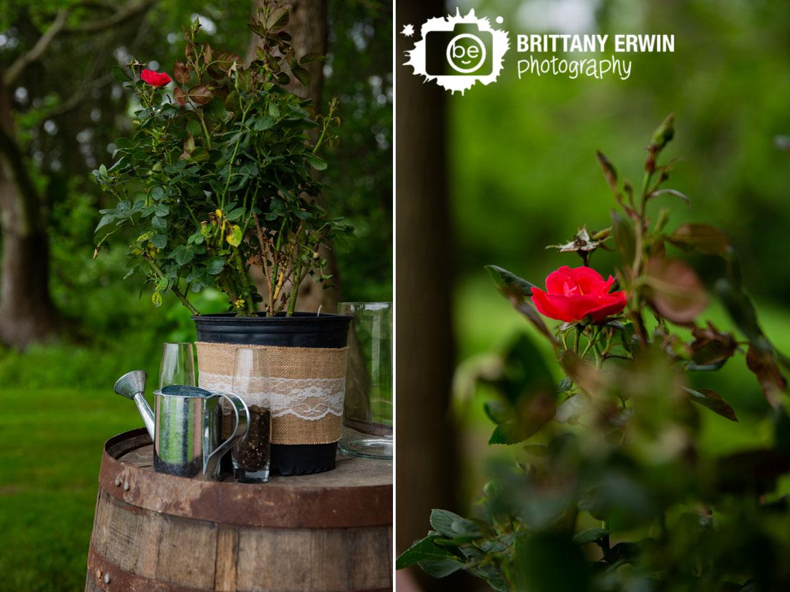 Unity-Ceremony-planting-rose-bush-at-altar-summer-wedding.jpg