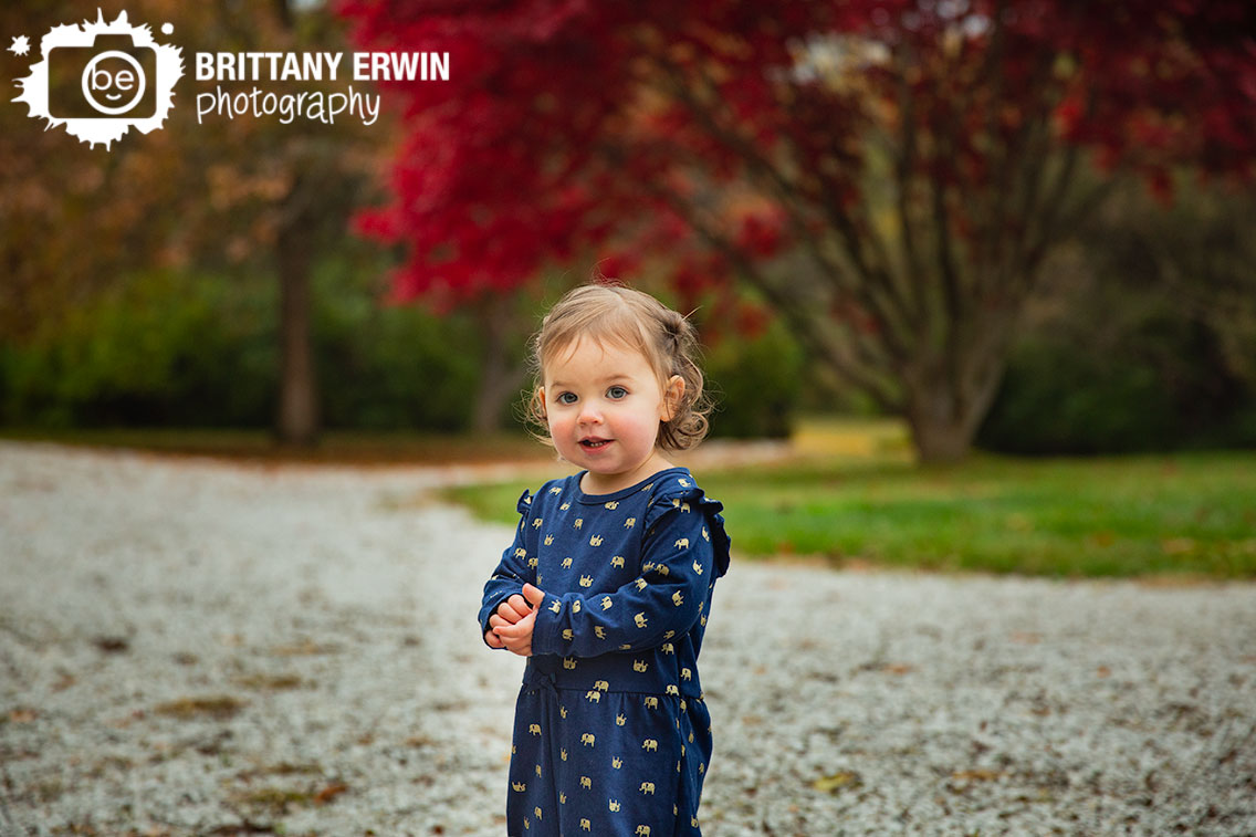 Indianapolis-fall-red-tree-portrait-photographer-toddler-girl-elephant-jumper.jpg