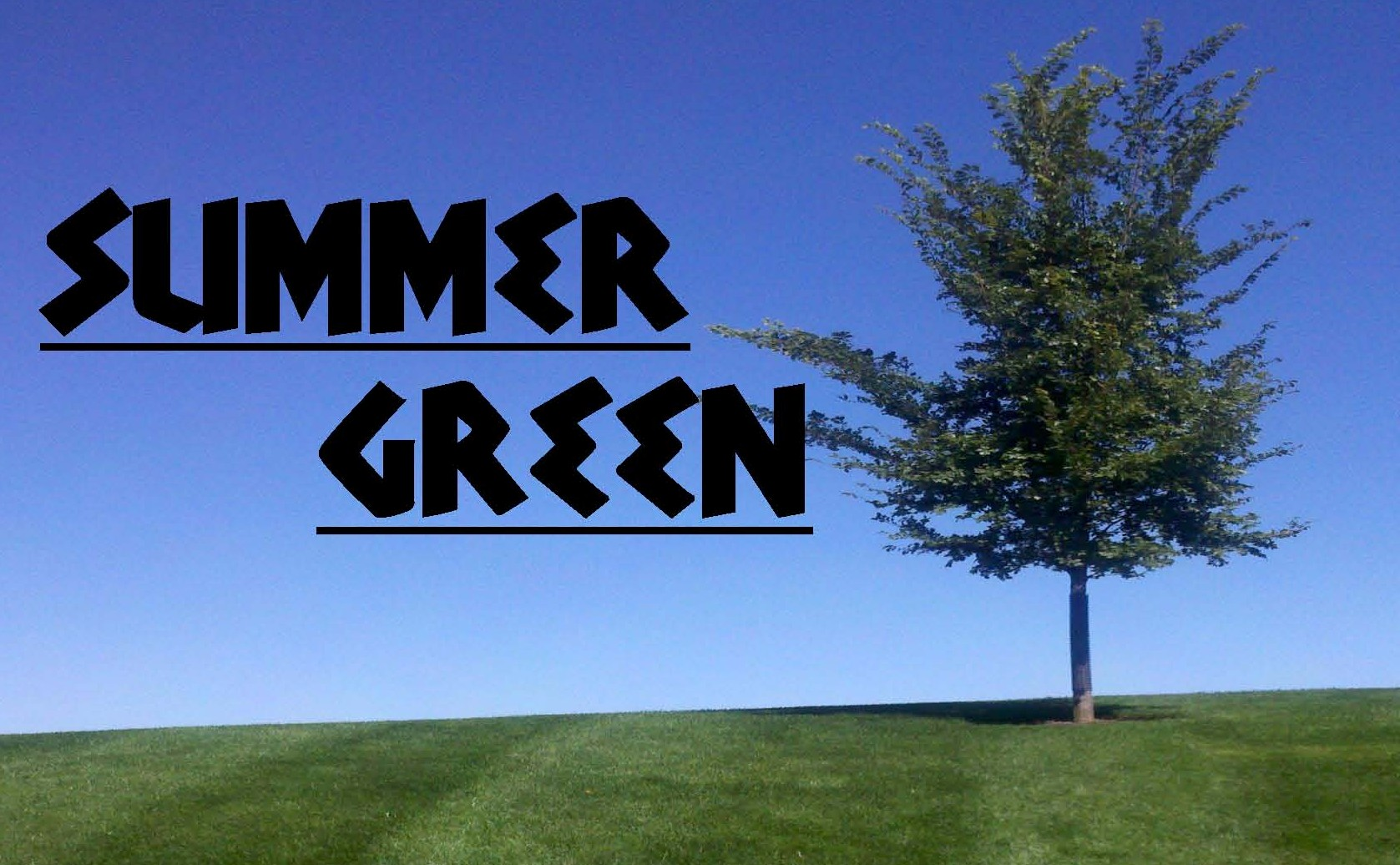 summer_green_logo_color.jpg