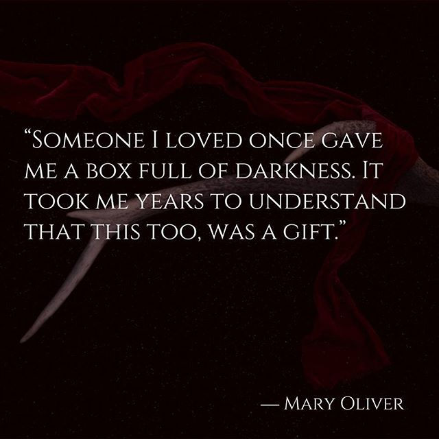 We find great inspiration in this quote from an amazing poet, hopefully you do too! 🌹 #quoteoftheday #inspiration #firstpost #darkatticvibes #maryoliver