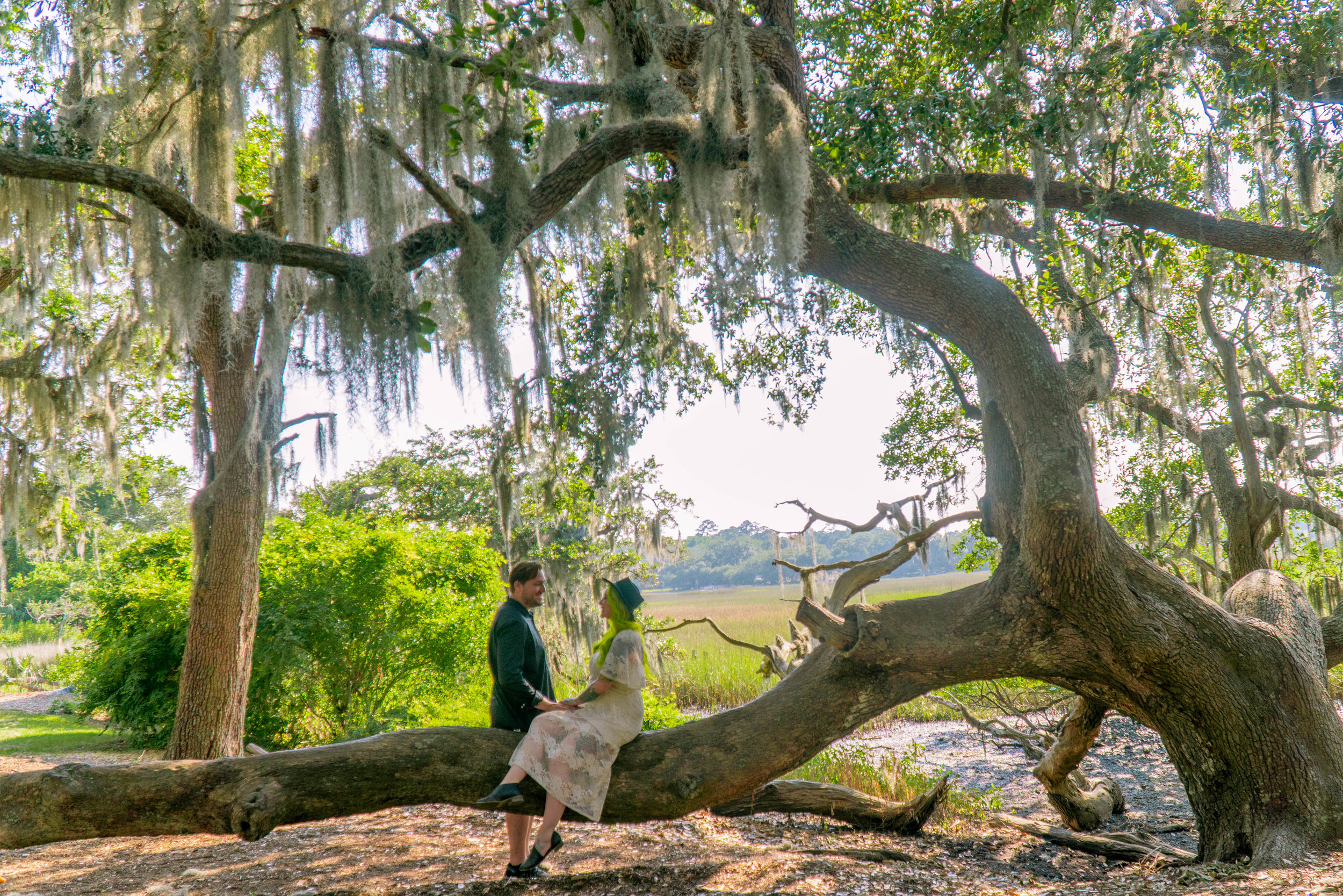 Boone Hall Plantation- The Chaos Collective