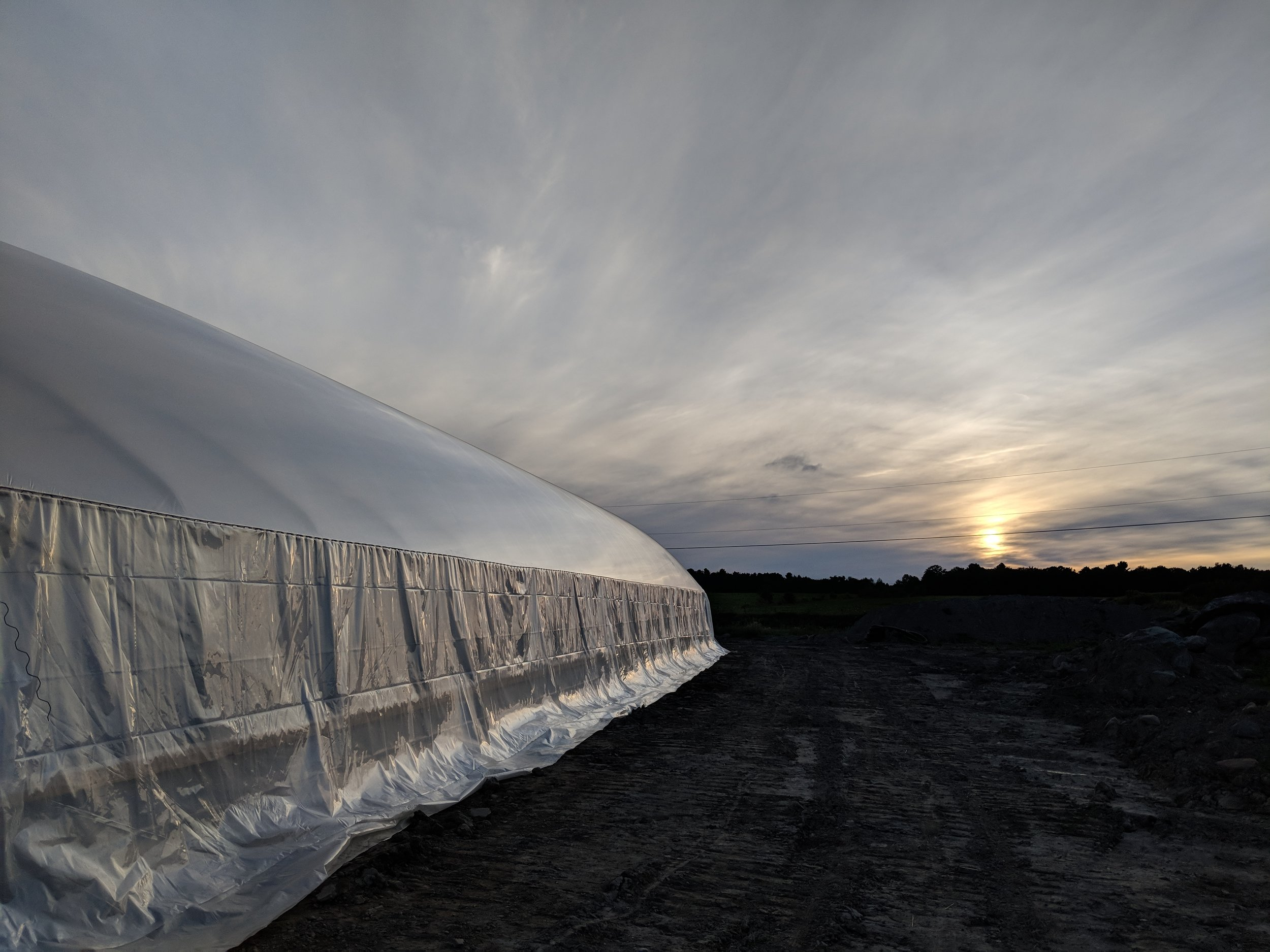 Les Fermes Northleaf - Greenhouse sides can be rolled up