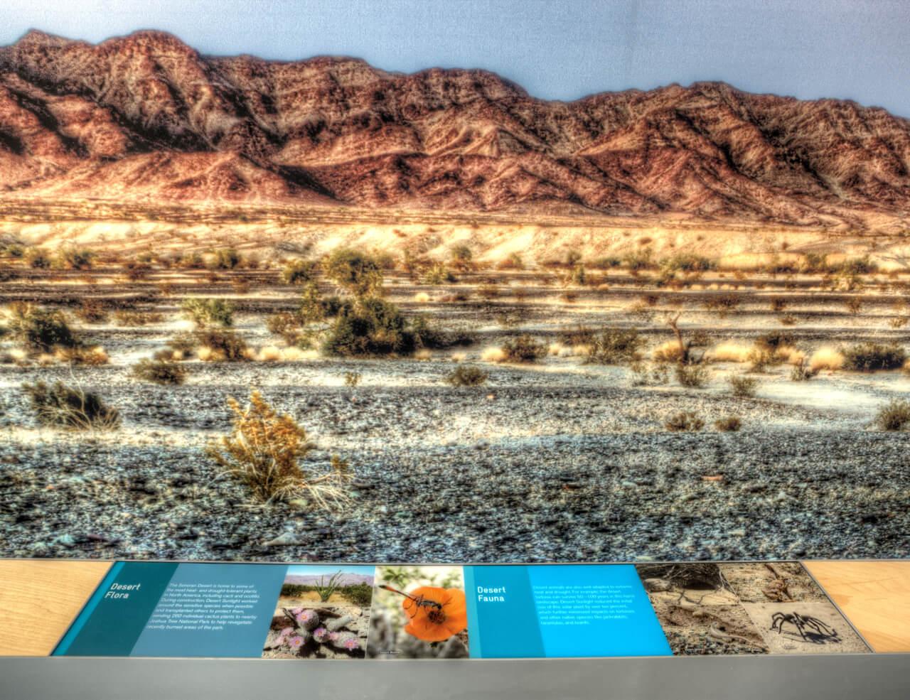 4-Desert-Sunlight-Visitor-Center-The Sibbett Group-Natural History-Drew Metzger.jpg