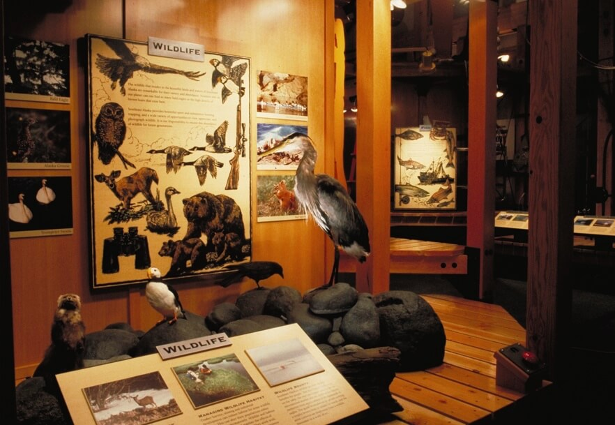 15-Resources-Wildlife-The Sibbett Group.jpg