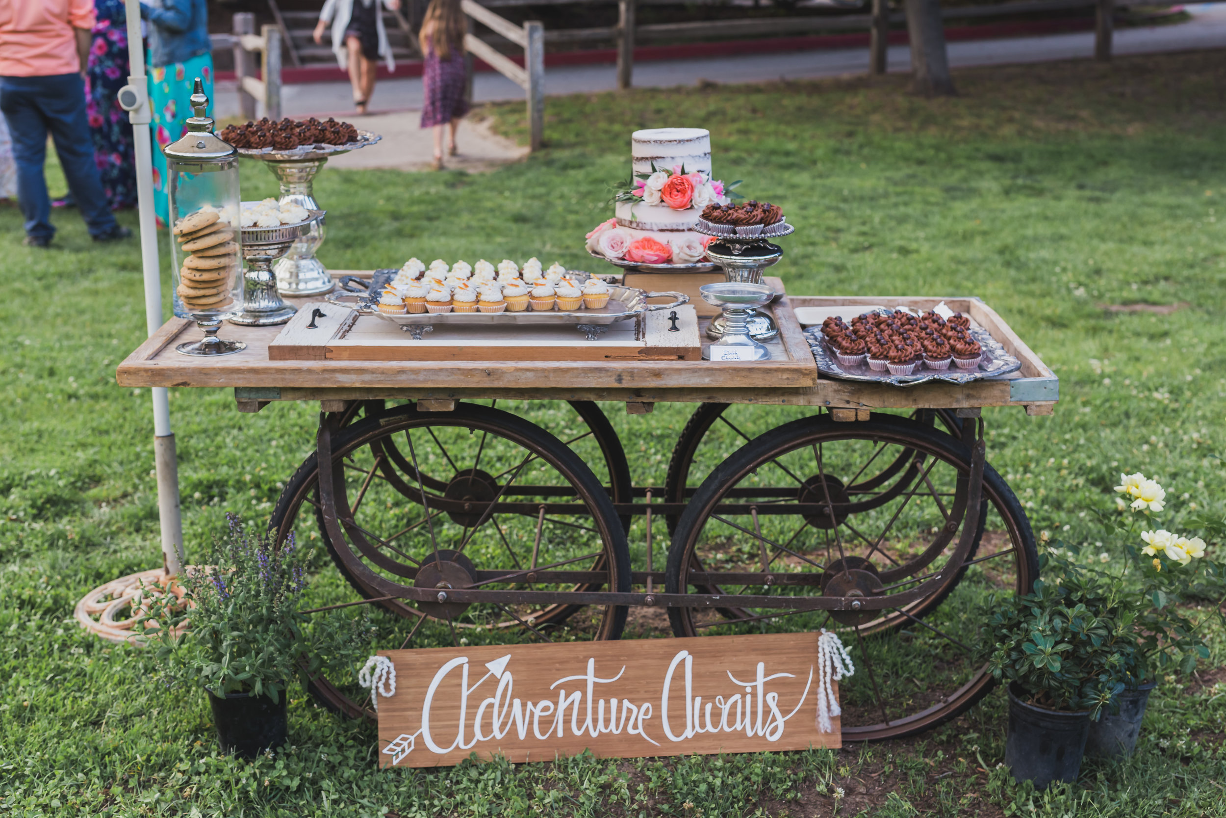 Cake: (Left to right) Gluten-Free Carrot Ginger, Triple Orange, Double Chocolate Eloise Table Rentals:  View Point Events  Wedding Coordination:  Lux & Jasper  Photographer:  Rust & Rose Photography  Venue:  Aptos Village Park