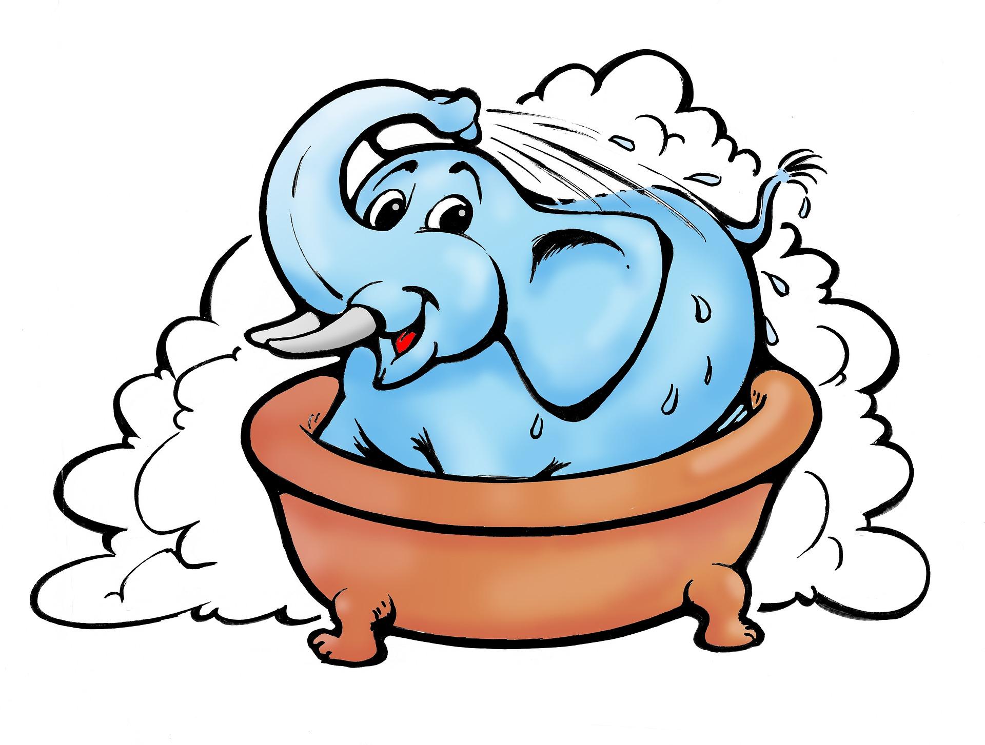 elephant-1830099_1920.jpg
