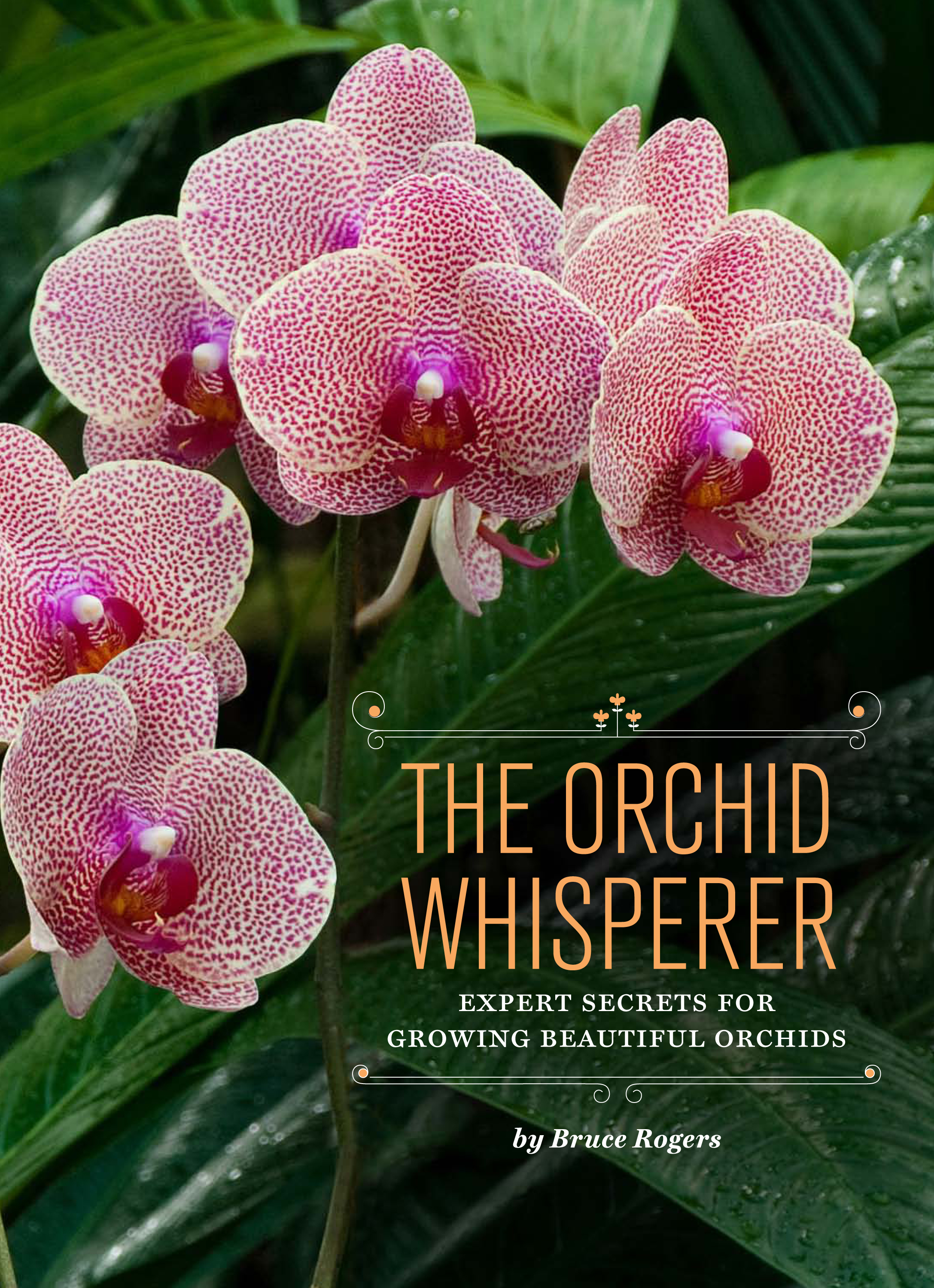 Orchid Whisperer book cover