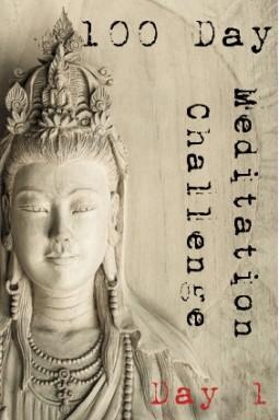 100-day-mediation-challenge-001-255x384.jpg
