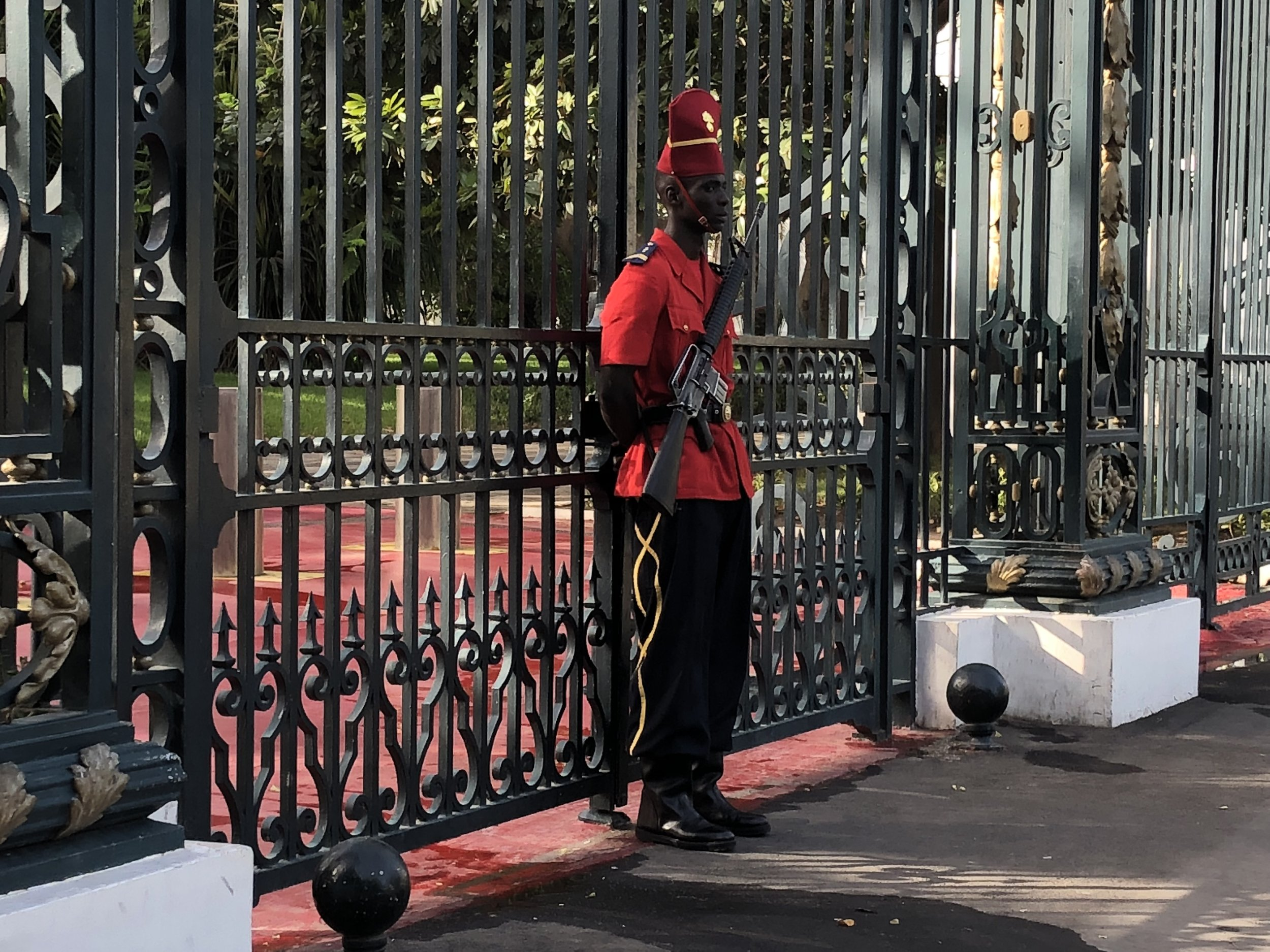 Street 03 Presidential Palace Guard.jpg