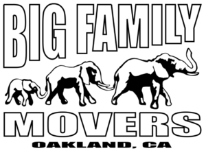 bigfamilymovers.jpg