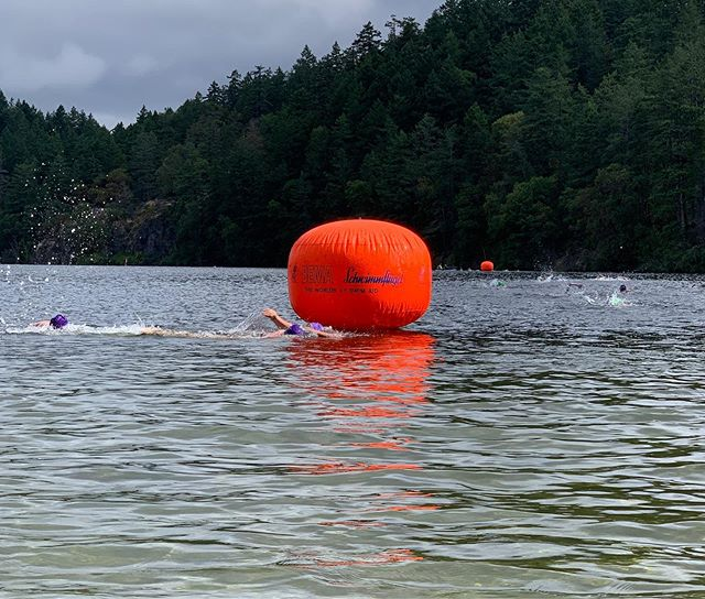 Thank you to all the Swimmers, Volunteers, and Officials who came out to the 2019 Open Water Provincial Championships!  What a great day to be out at the lake!  A special thanks goes out to @scenicrentalsvictoria for providing us with paddle boards for the event!  #provincalchampionships #thetislake #SUP #openwaterswimming #yyj #paddleboardrentals