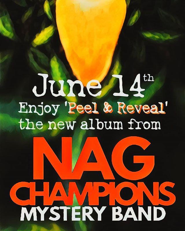 #NewMusic #NagChampions #AlbumRelease #PeelAndReveal #IndependentMusic #2019