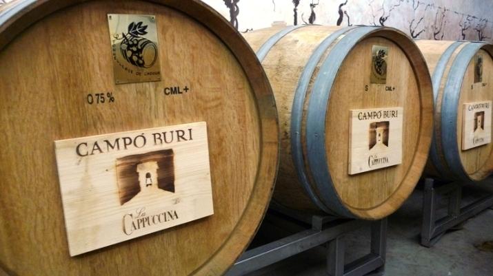 La_Cappuccina_winery_-_campi_buri_casks.jpg