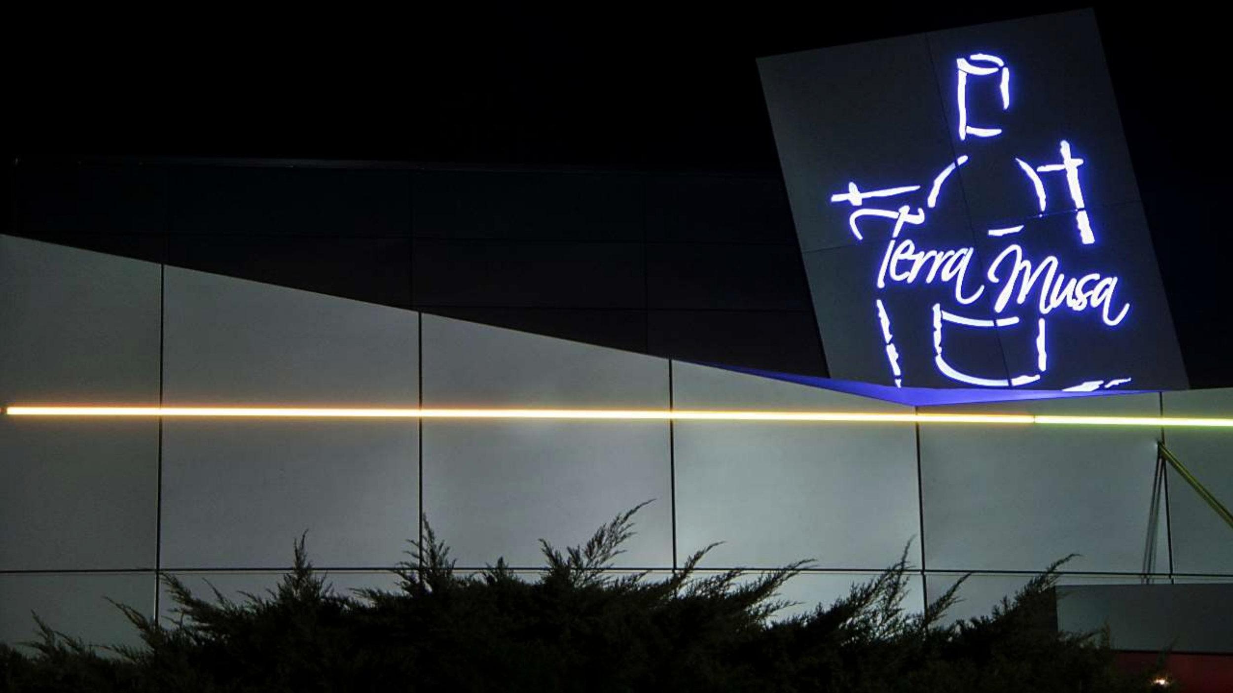 MUSARAGNO TERRA M winery night photo.jpg