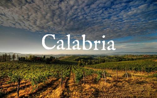 Calabria wine.jpg