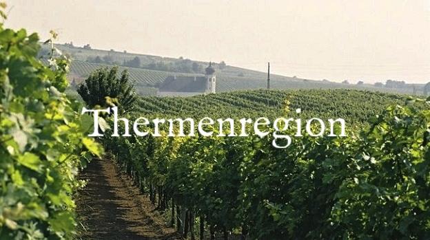 uploads%2F1443702533656-Photograph+Thermenregion+-+Vineyards.jpg