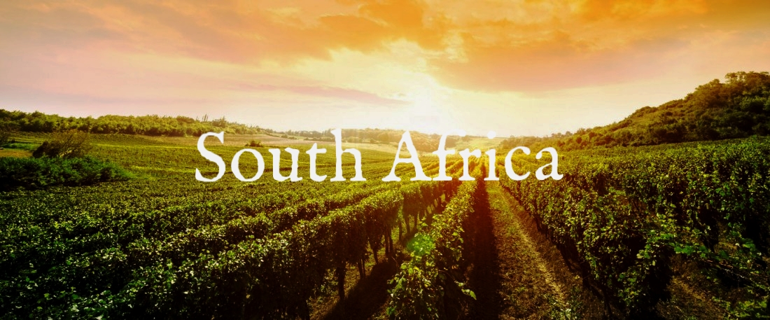 Wine-Tours-South-Africa-1100x457.jpg
