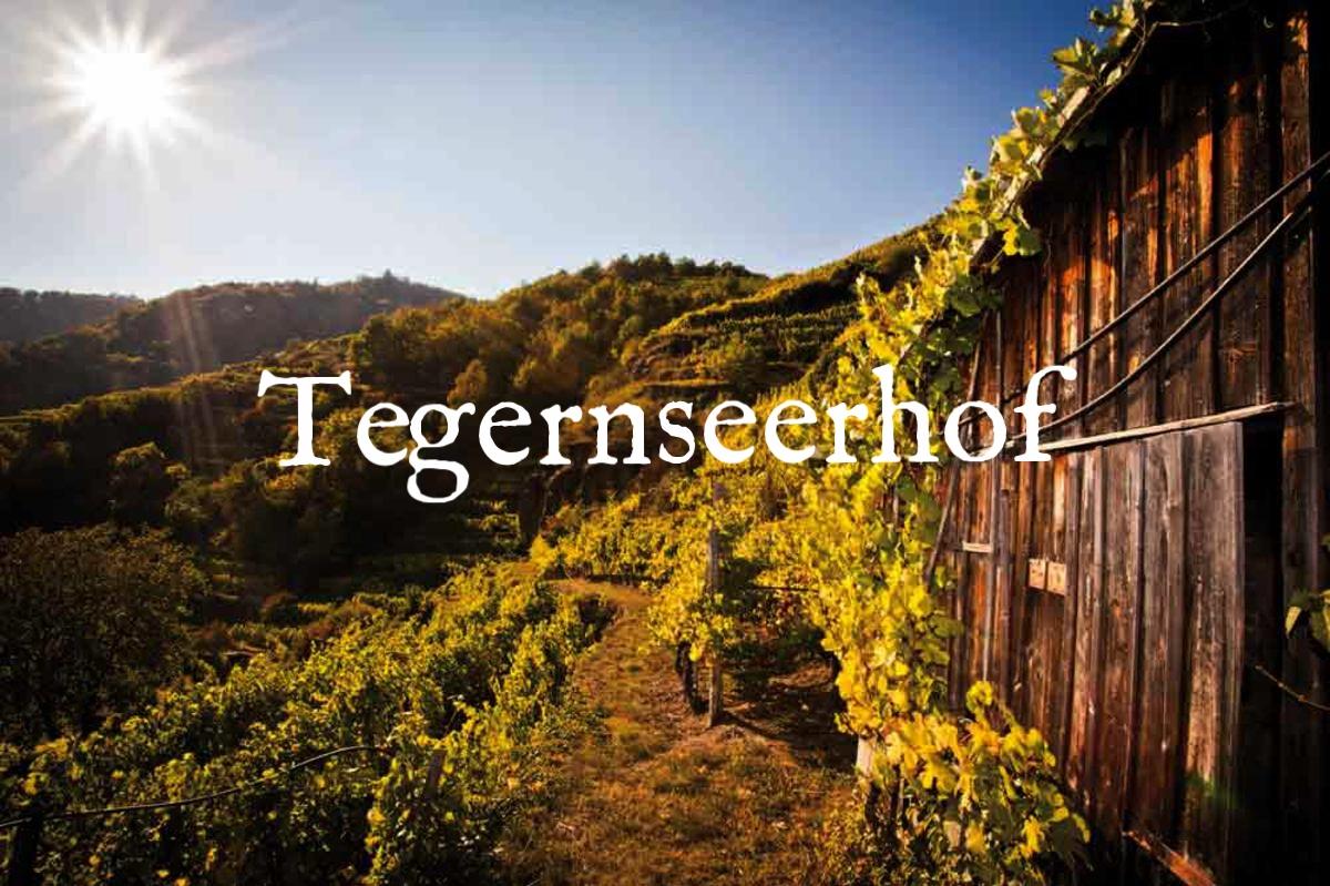 csm_tegernseerhof_3_53939b2f59.jpg