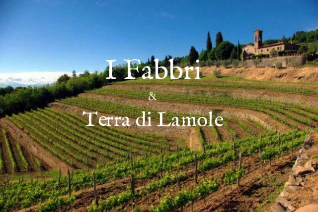 fabbri-vineyards-2.jpg