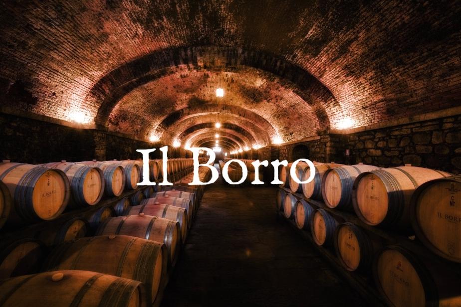 cantina-il-borro-tuscany-italia-salvatore-ferragamo-cellar.jpg