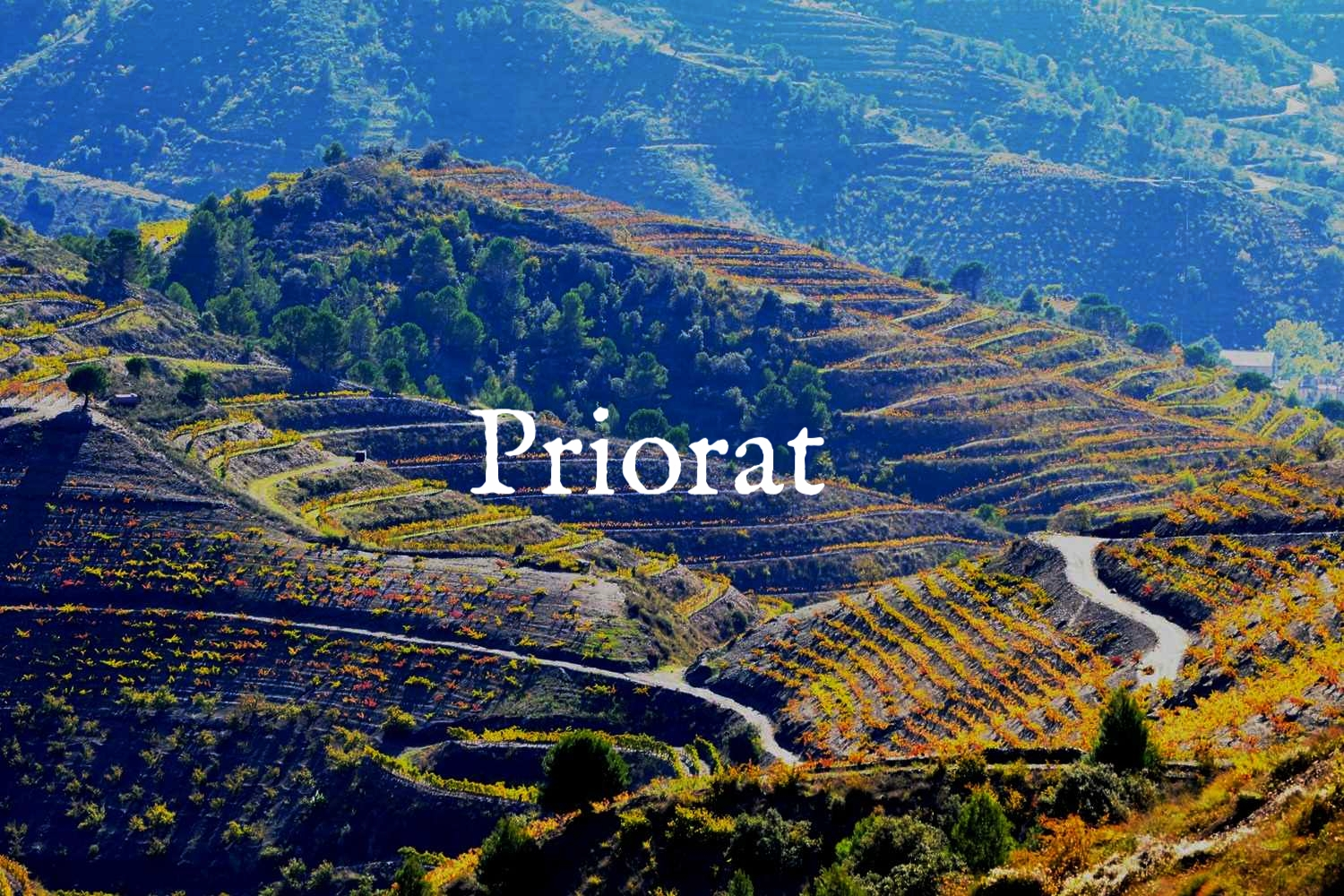 wine_region_priorat.jpg