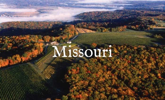 vineyard_aerial1.jpg