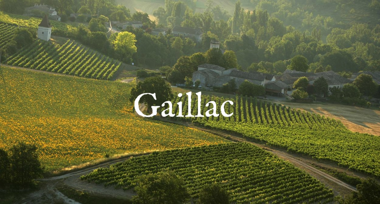 south_west_vineyard_-_france_0.jpg