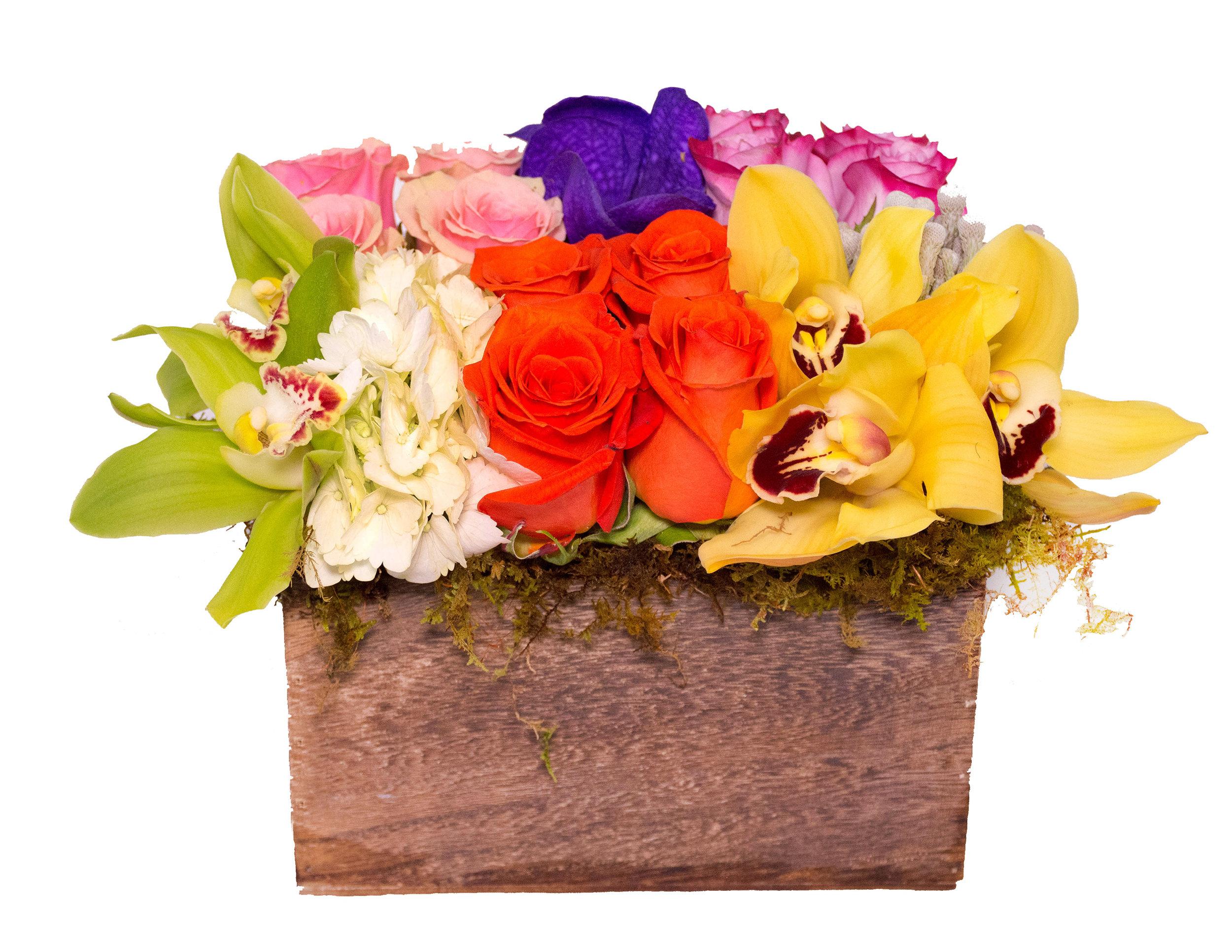 Florals-26New.jpg